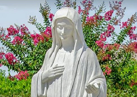 MEDJUGORJE MESSAGE February 25th